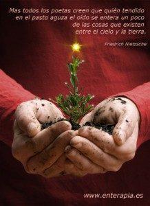Navidad-Enterapia